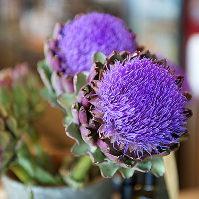 Margitta's Flowers - Florist at Lonsdale Quay Market